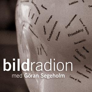 Bildradionlogo